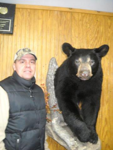 Bear - 105 lb - Vermont